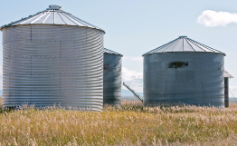The photograph shows three round grain storage bins.