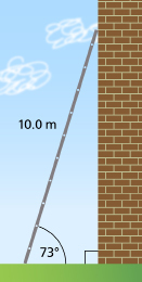 This graphic shows a 10.0-m ladder leaning against a wall. The ladder makes an angle of 73 with the ground.